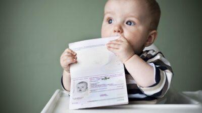подтверждение гражданства Украины